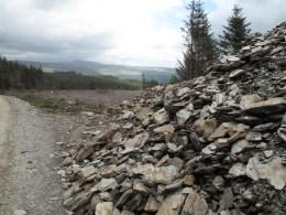 Durch den Wald nach Glenmalure