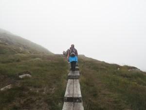 Hoch auf den Torc Mountain