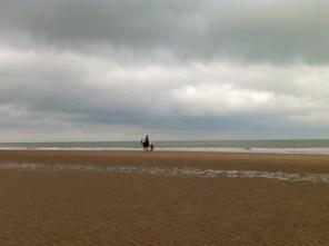 Reiturlaub am Strand von Oostkapelle