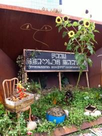 Urban Gardening bei Frau Gerolds