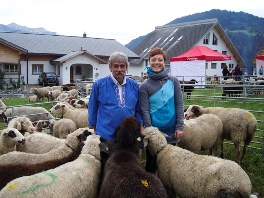 Mitten unter Schafen beim Prättigauer Alpspektakel