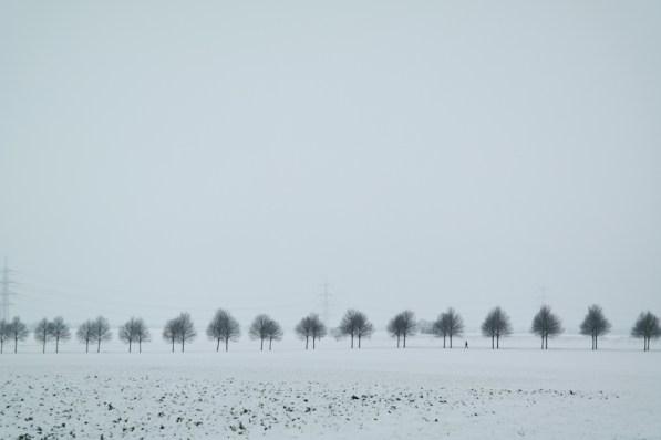 Verschneite Felder in Stommeln