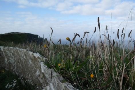 150925–Landlinien–BurrenWay-481