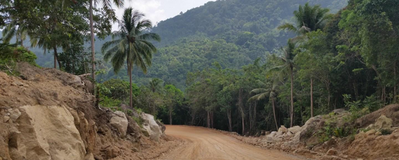 Mit dem Roller durch den Dschungel Koh Phangans