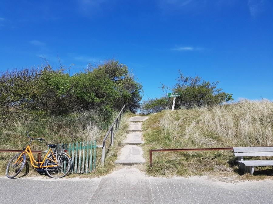 Dreiklang des Wassers: Nordsee, Wattenmeer und Hammersee