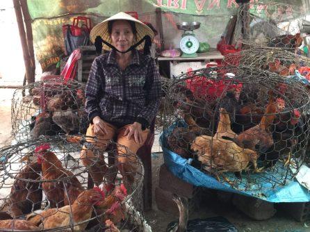 Vietnam Phu Loc
