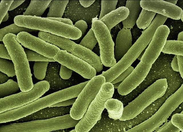 Legionella Risk Assessment Guidance and Mobile Template