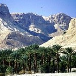 Ein Gedi oasis at the Dead Sea