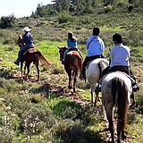 Horseback riding in Galilee