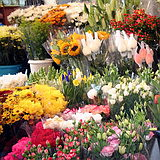 Flower bouquets at Carmel Market Tel Aviv