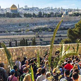 Palm Sunday Road on Mount of Olives in Jerusalem