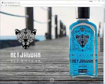 landois-pagina-web-rey-jaguar