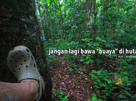 """img 6264 - Jangan lagi bawa """"buaya"""" di hutan"""