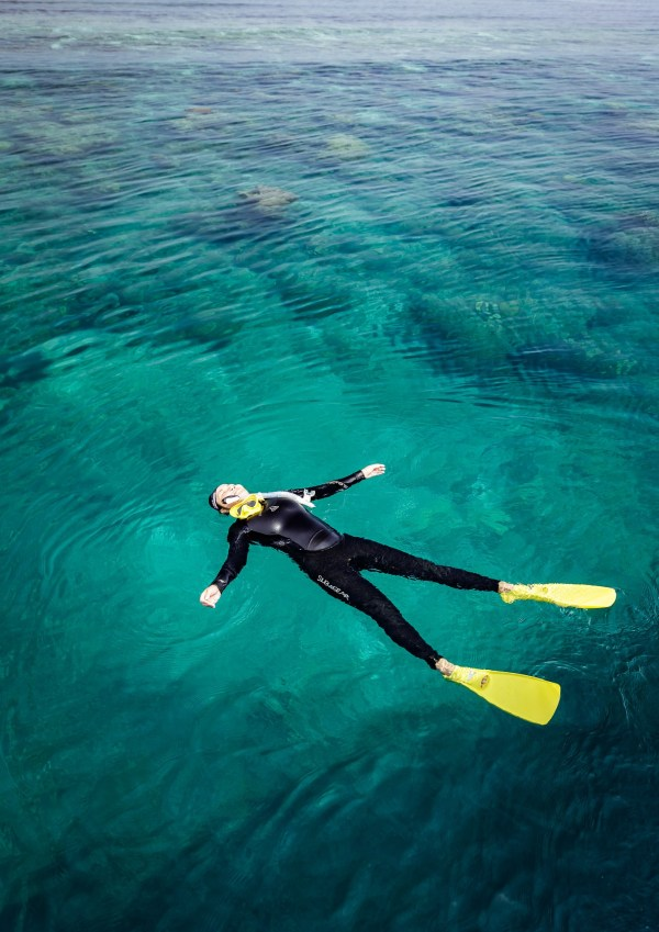 bawah laut 9 - Selamat Datang di Bawah Laut