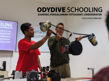 odydive schooling sharing pengalaman fotografi underwater