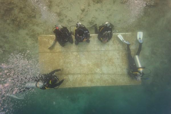 open water sesi