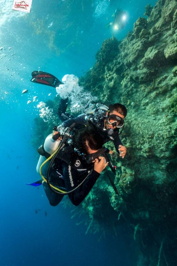 tryscuba wakatobi 06 683x1024 - Discovery Scuba Diving di Wakatobi