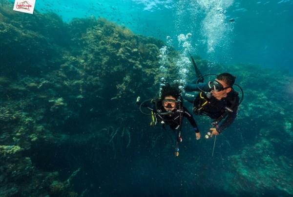 tryscuba wakatobi 08 1024x691 - Discovery Scuba Diving di Wakatobi