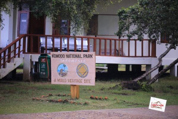 komodo d2 45 - Komodo Day 2 : Bertemu Komodo di Rinca