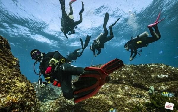komodo6 d6 39 1024x641 - Digoyang Arus Komodo | Dive Trip | 6D5N | 8-13 Juni