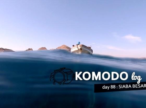 komodo 88 penyu siababesar 01 - Komodo 88 : Mengunjungi Paman Penyu di Siaba Besar