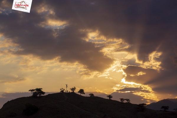komodo highlight 11 - Menikmati Keindahan Komodo
