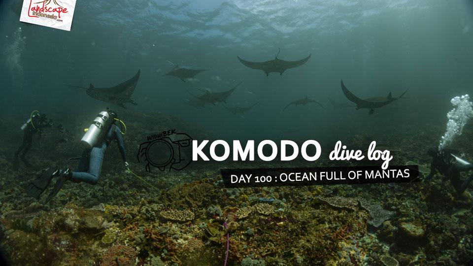 komodo100 weba - Komodo Diving Log Day 100 : Ocean Full of Manta