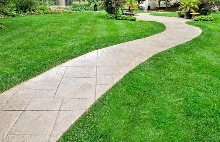 renovated-lawn