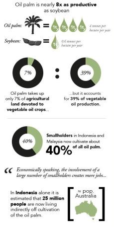Palm_Oil_Balance_EXCERPT-1