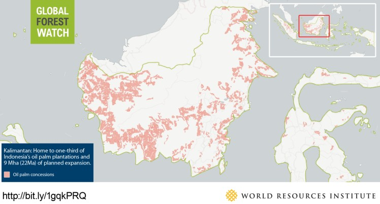 Global Forest Watch palm oil