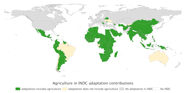 Ag in adaptation INDCs-web