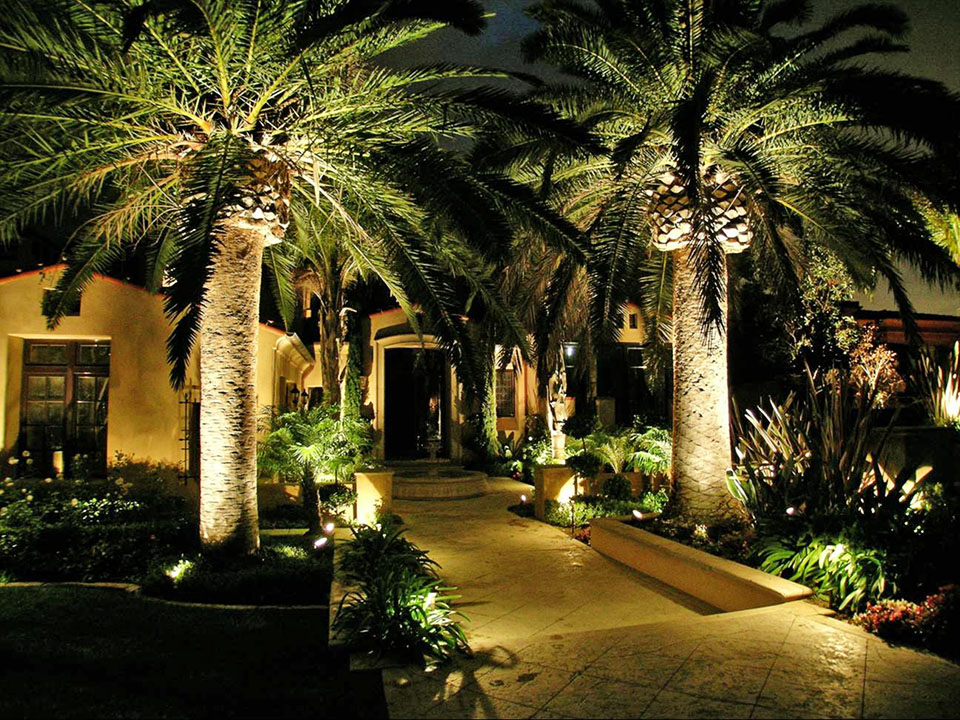 landscape lighting ideas for tropical