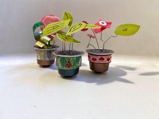piante tropicali con capsule del caffè