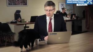 Gato interrumpe discurso de alcalde de Letonia (video)