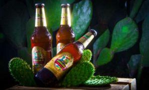 ¡Para este calor! conoce la cerveza de nopal, famosa en el mundo