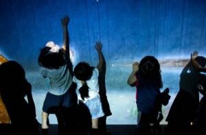 Niños con insuficiencia renal participan en un campamento de verano especial