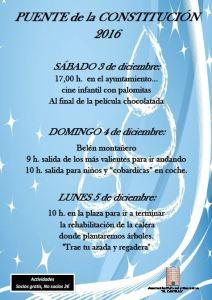 cartel_constitucion2016