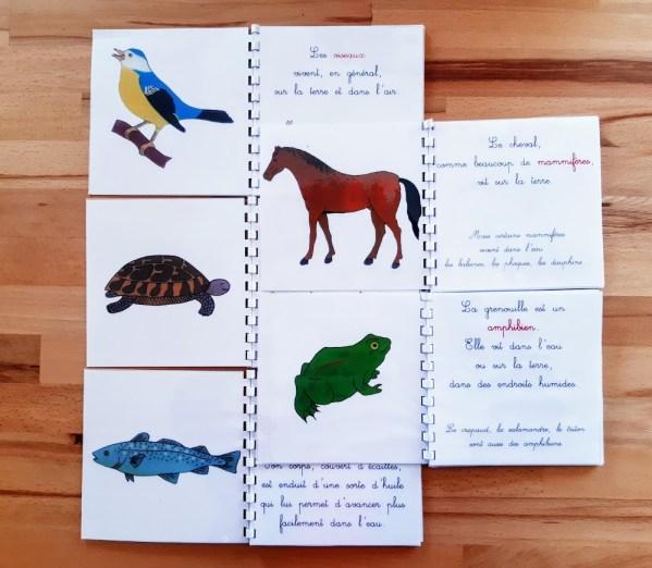 Livrets de zoologie Montessori 3-6 ans