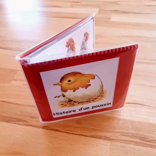 Histoire d'un jeune poussin ; Montessori ; images et histoires séquentielles ;