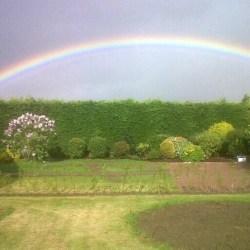 Rainbow over garden