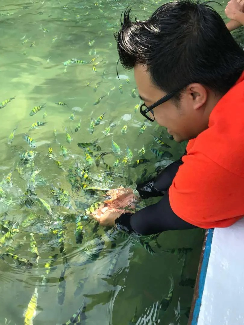 Langkawi Mangrove Tour Fish Feeding