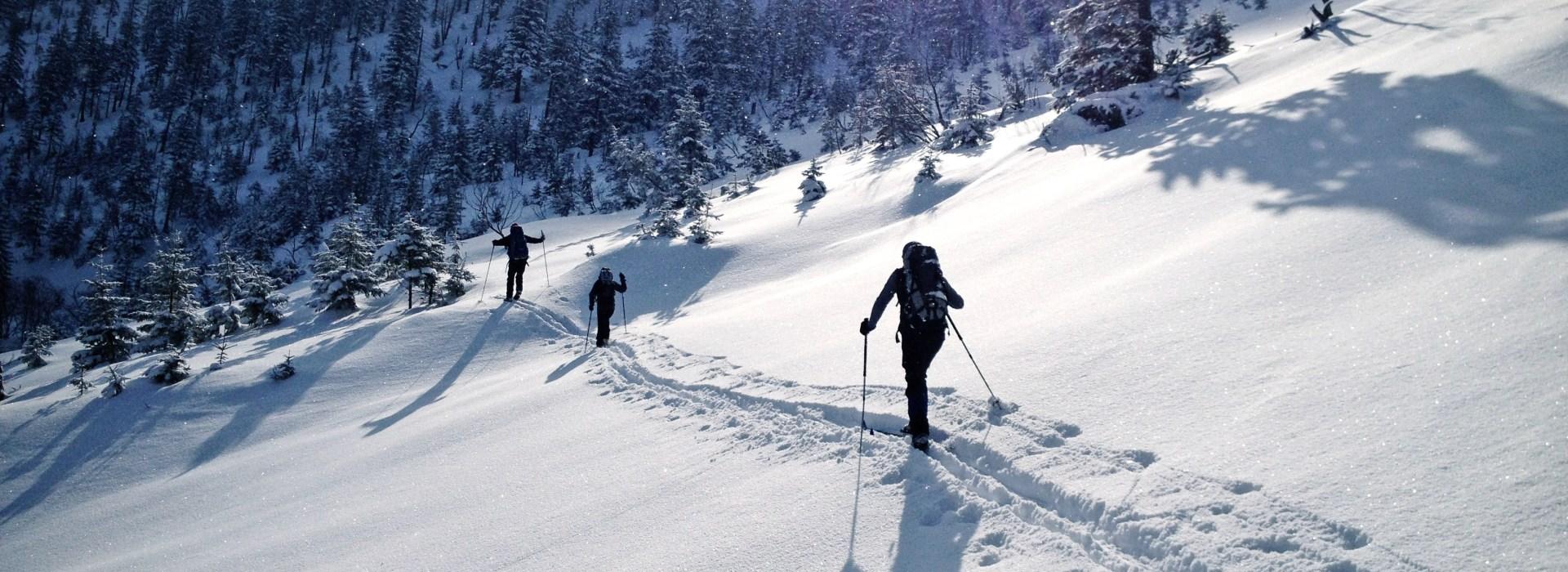 Skitouren in den Alpen