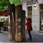 Per fare un libro ci vuole un albero… e viceversa!