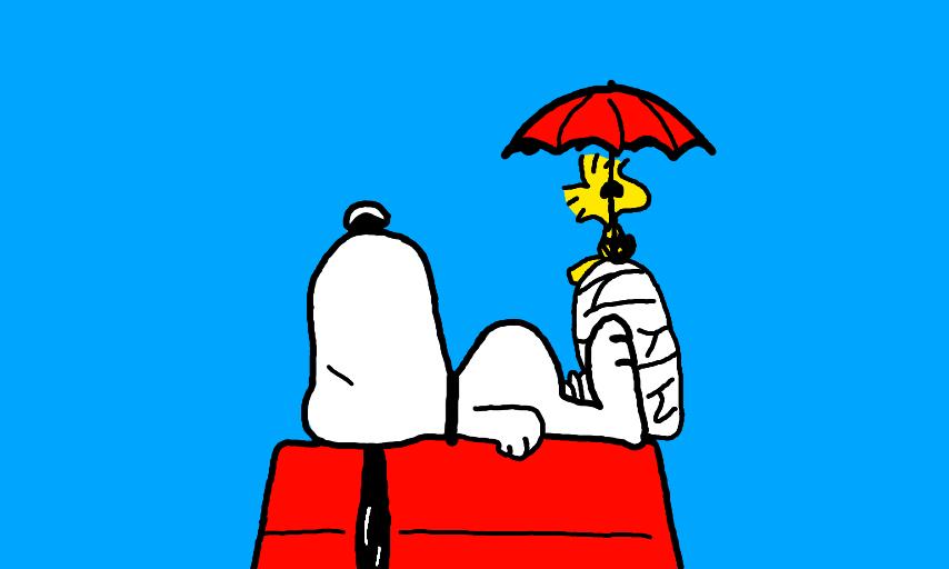 snoopy con una gamba rotta