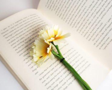 libri belli da leggere
