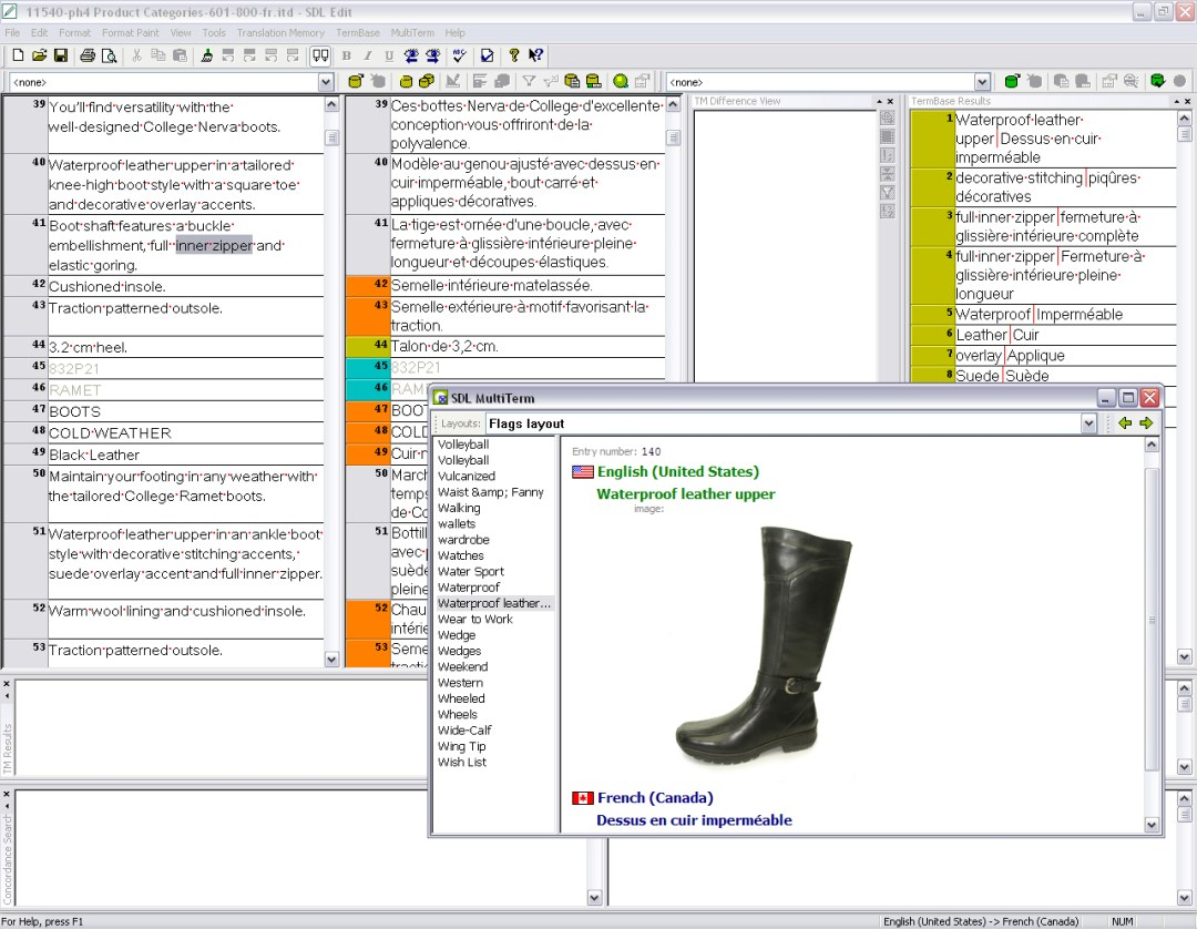 screenshot showing terminology management with picture of boot in shoe industry translation