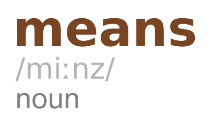 Grammatical use of the word 'means'