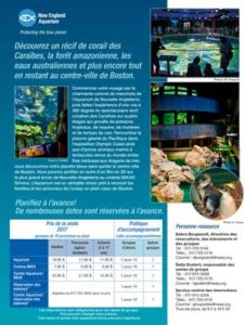 French Brochure Translation - new England Aquarium Brochure Page 1