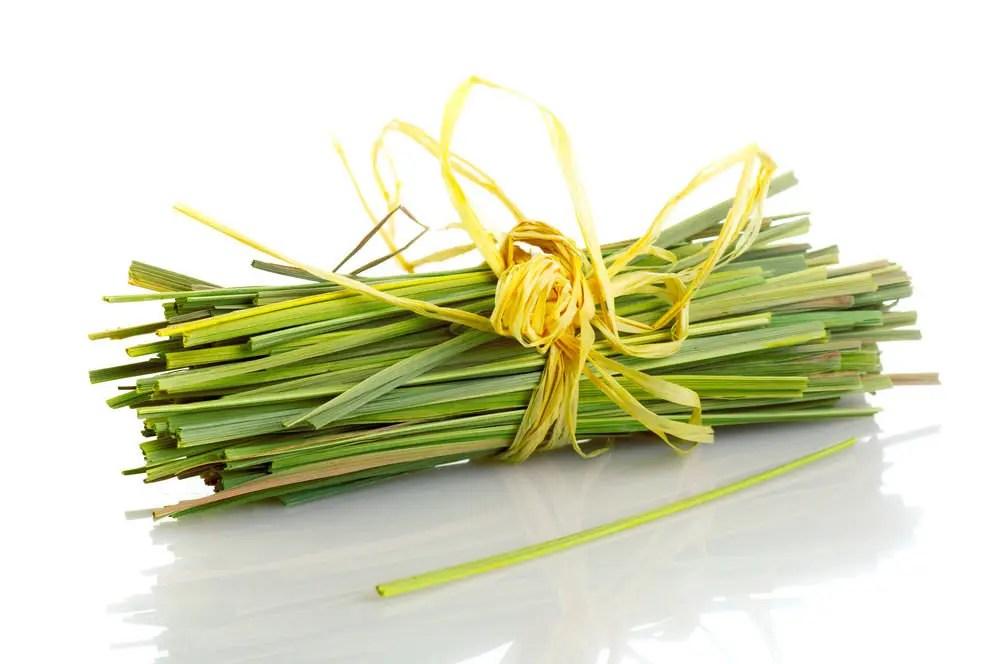 Lemongrass health benefits