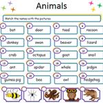 Животные - Соедини картинки с названиями 2